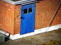 blue door (© 2010 Tisha Clinkenbeard)