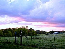 sunset on the pasture (© 2011 Tisha Clinkenbeard)