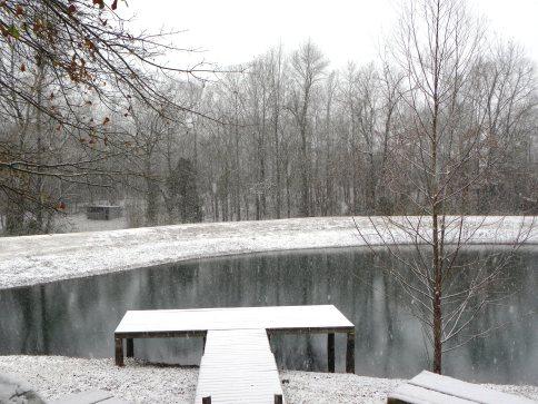 falling snow (© 2010 Tisha Clinkenbeard)
