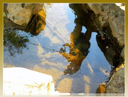 fishing reflection (©2011 Tisha Clinkenbeard)
