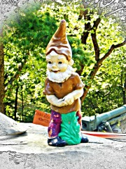 brown hat gnome
