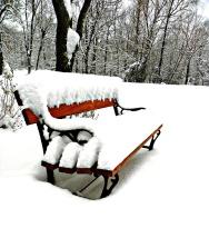 Snowy Seat