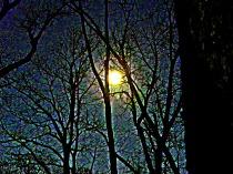 HDR moon at night