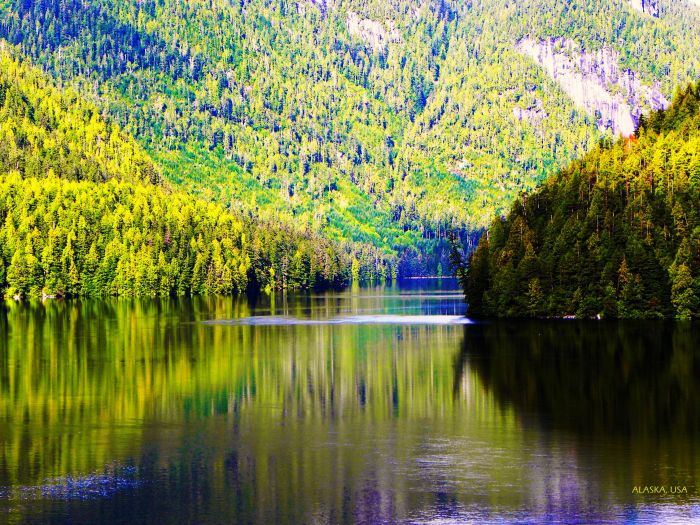 Alaskan reflection NAMED