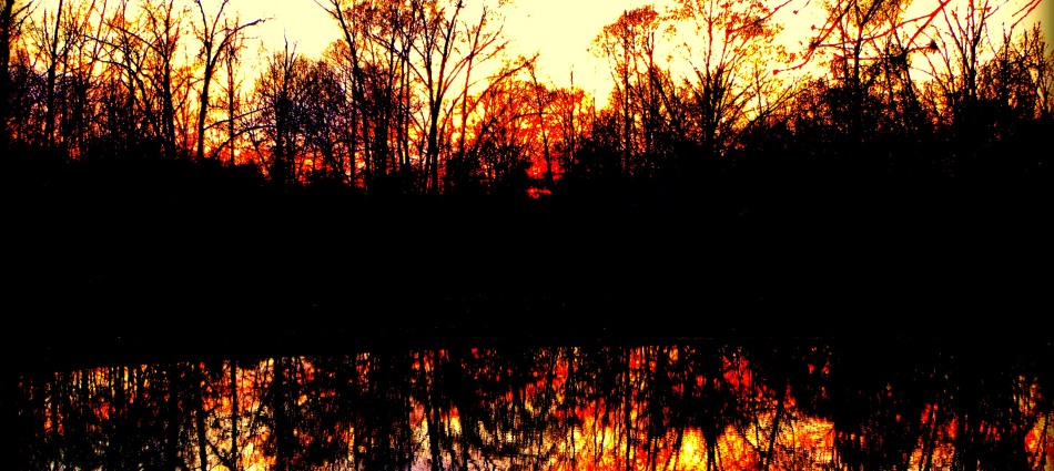 http://foundroundandabout.files.wordpress.com/2013/02/sunset-contre-juor.jpg?w=950&h=425&crop=1