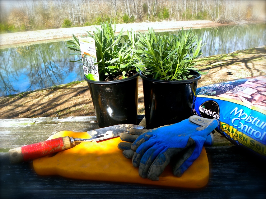 Tools for getting pretty plants to grow!