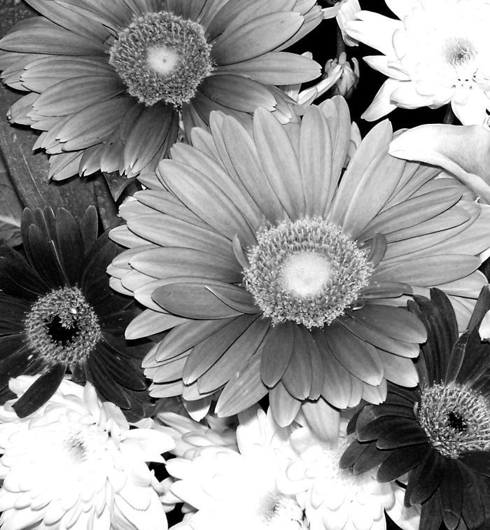 bw bouquet