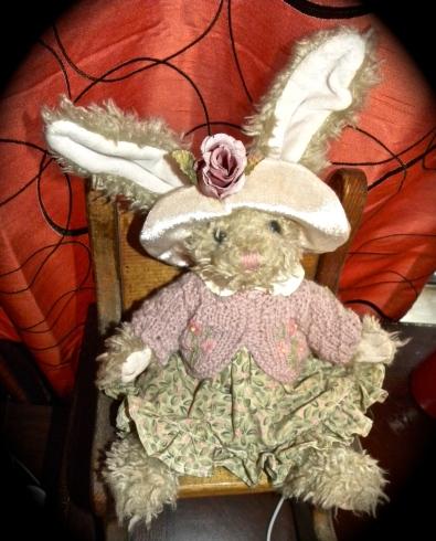 baby girl bunny