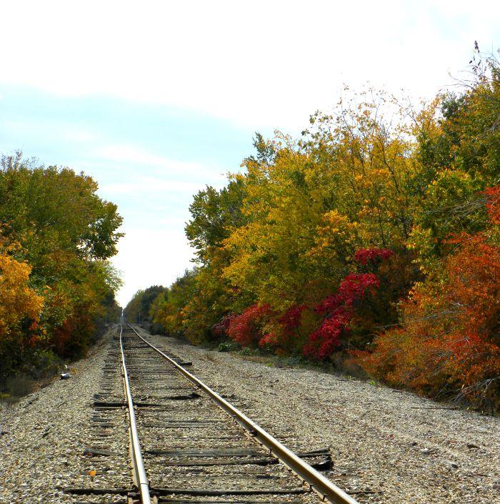 fall-tracks